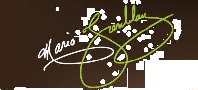 Photographe Mario Tremblay  Logo